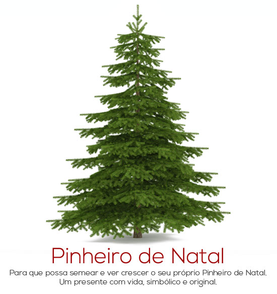 lib021-pinheiro-natal-grow-bag-cork-life-in-a-bag